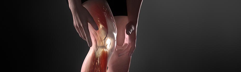 complex knee