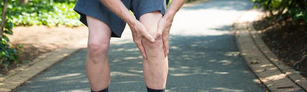 knee ligament